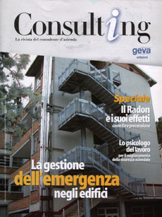 Consulting 1-2003