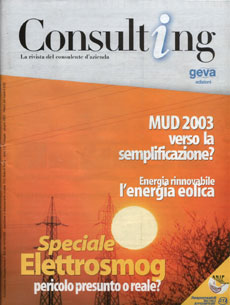 Consulting 3-2003