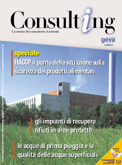 Consulting 3-2004