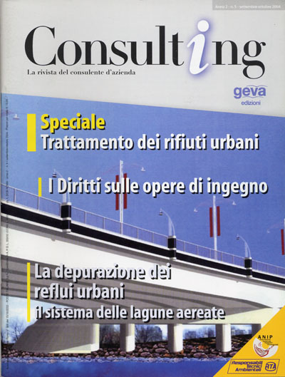 Consulting 5-2004