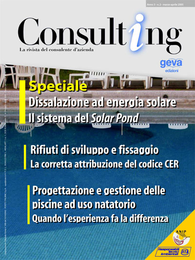 Consulting 2-2005