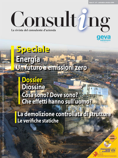 Consulting 5-2006