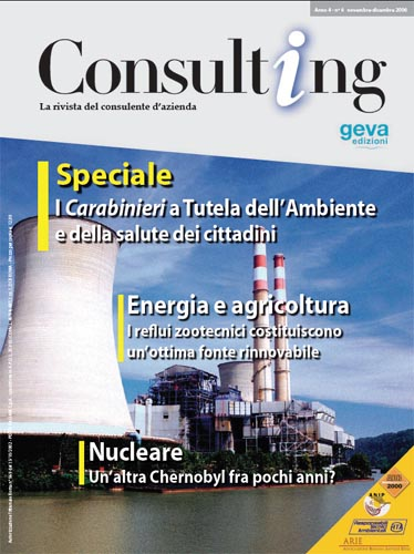 Consulting 6-2006