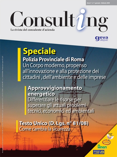 Consulting 1-2009