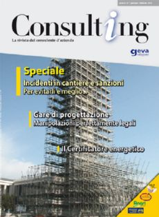 Consulting 1-2010