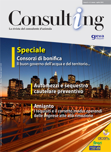 Consulting 2-2010