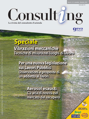 Consulting 6-2010
