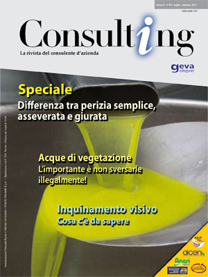 Consulting 4-5/2011